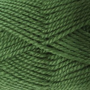 Woolly Red Hut 8ply 19 Grass